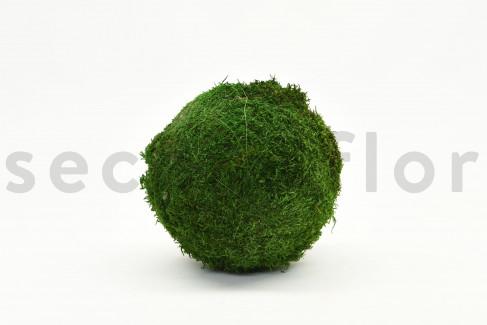 Boule de Mousse plate Stabilisée - 20 cm