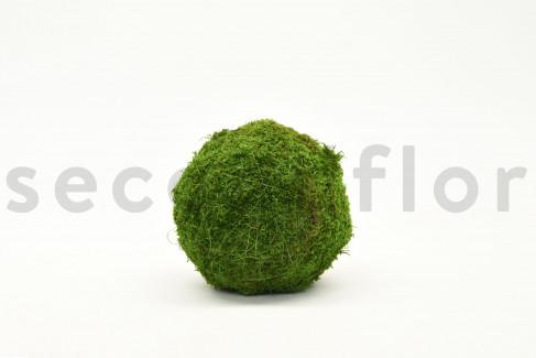 Boule de Mousse plate Stabilisée - 15 cm