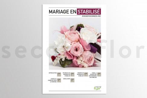 [G_P_SF-DB-2_E] Dossier business 2 - «Mariage en stabilisé»