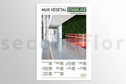[FR] Dossier business 1 - «Mur végétal stabilisé»