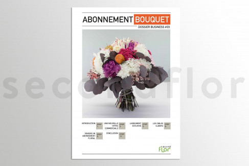 [G_P_SF-DB-3_E] Dossier business 3 - «Abonnement bouquet»