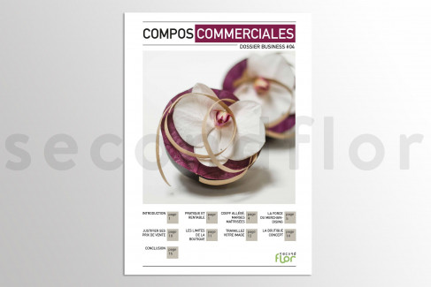 [FR] Dossier business 4 - «Compositions commerciales»