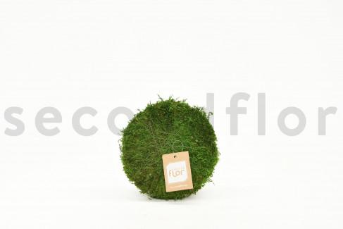 Rotondo di muschio piatto stabilizzato - 20 cm