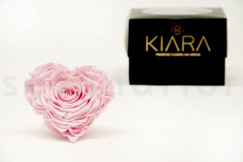Stabilisiertes Rosenherz KIARA XXL - 1 St. - Bridal Pink