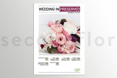 [G_P_SF-DB-2_E] Business file 2 - «Wedding in preserved»