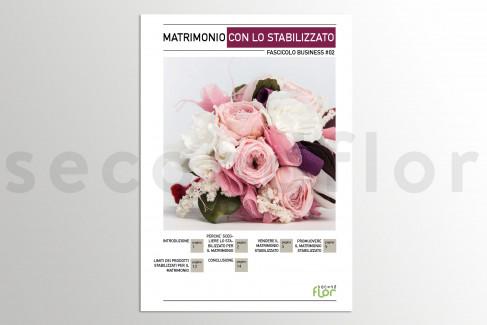 [G_P_SF-DB-2_E] Fascicolo aziendale 2 - «Matrimonio con lo stabilizzato»