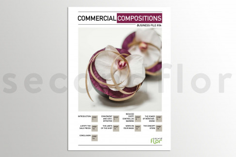 [G_P_SF-DB-4_E] Business file 4 - «Commercial Compositions»