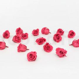 Preserved Princess Rose S box of 16 - Dark Pink