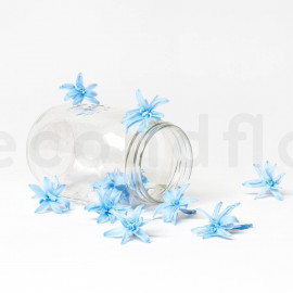 Tubéreuse Stabilisée S - Boîte de 12 - Bleu Clair