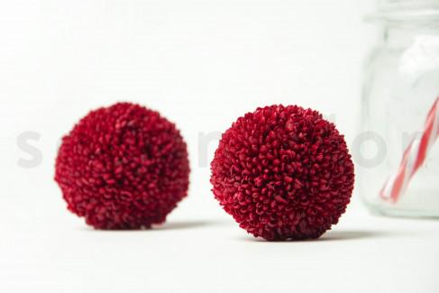 Preserved Ping Pong Chrysanthemum M - Box of 6 - Burgundy