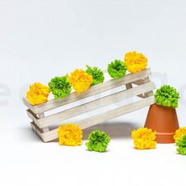 Chrysanthème Mille Feuilles Stabilisé M - Boîte de 6 - Jaune