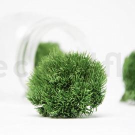 Green Ball Stabilisée M - Boîte de 4 - Vert