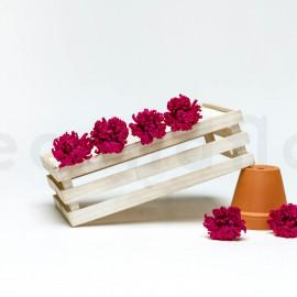 Chrysanthème Mille Feuilles Stabilisé M - Boîte de 6 - Rose