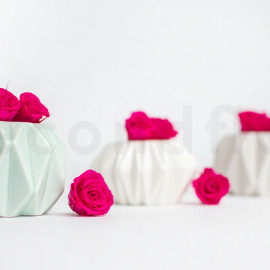 Preserved Rose M box of 9 - Hot Pink