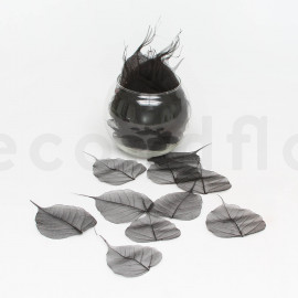 Skeleton Leaves - Boîte de 200 - Noir