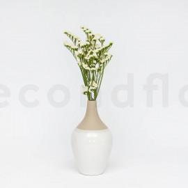 Statice sinuata stabilisé - Blanc