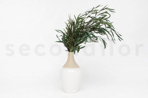 Eucalyptus Nicoly Stabilisé - Vert