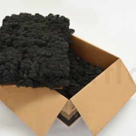 Preserved Scandinavian Lichen / 6.6 lbs - Black