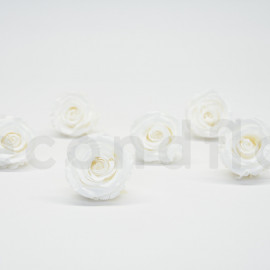 Preserved rose Verdissimo Extra - box of 6 - White