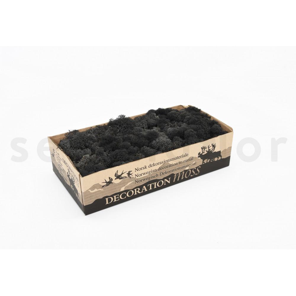 500 gr lichen scandinave noir stabilis. Black Bedroom Furniture Sets. Home Design Ideas