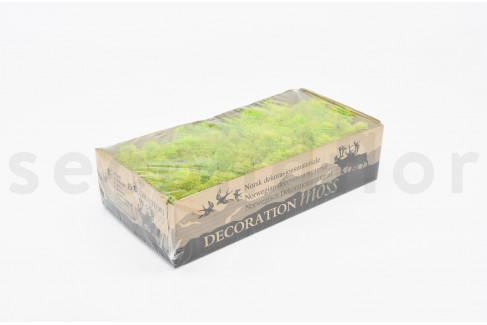 500 gr lichen scandinave vert citron stabilis. Black Bedroom Furniture Sets. Home Design Ideas