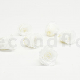 RoseAmor Preserved rose L+ - Box of 6 - Pure White