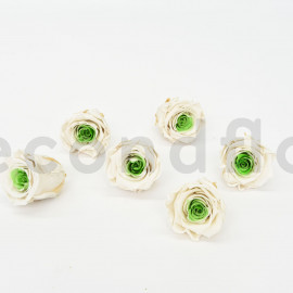 RoseAmor Preserved Rose L - box of 6 - White Green Heart