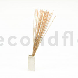 Mash Reed Stabilisé - Naturel