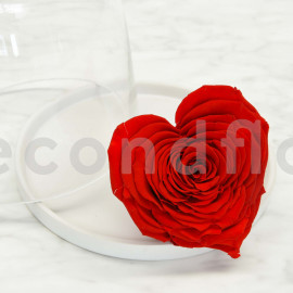 Preserved heart rose RoseAmor XXL - Box of 1 - Red