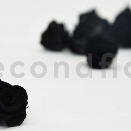 Rose Princess Stabilisée S - Boîte de 16 - Noir