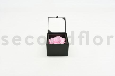 Bloominbox XL - Écrin noir - Rose stabilisée rose clair