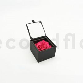 Bloominbox - Écrin noir - Rose stabilisée rose fuchsia