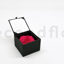 Bloominbox XL - Écrin noir - Rose stabilisée rose fuchsia