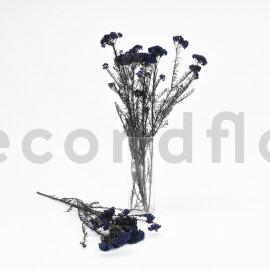 Diosmi Stabilisé - Bleu Lavande