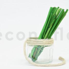 Elephant Reed Court Stabilisé - Vert clair