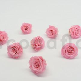 Rose stabilisée Kiara L - Boîte de 8 - Rose