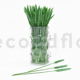 Blé Stabilisé - Vert