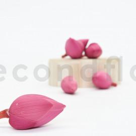 Fleur de Lotus stabilisée M - Boîte de 6 - Rose