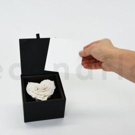 Bloominbox XL - Écrin noir - Rose coeur stabilisée blanc naturel