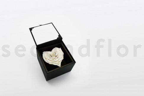 Bloominbox XL - Schwarze Schachtel - Stabilisiertes naturweißes Rosenherz