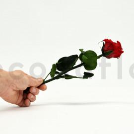 Rose sur tige Mini Stabilisée Premium - Rouge