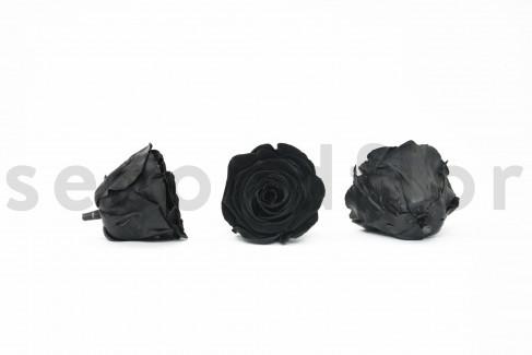 Rose stabilisée Kiara L - Boîte de 8 - Velours noir