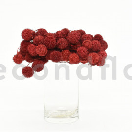 Fruit de platane - Sachet 250 gr - Bordeaux