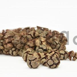 Pomme de cyprès - Filet 1kg - Naturel