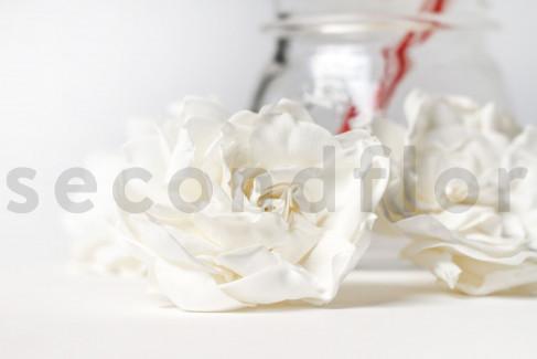 Preserved Gardenia XL x4 - White