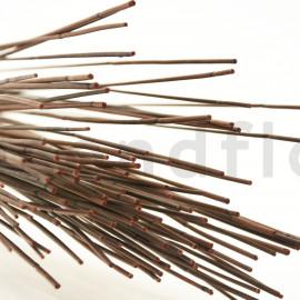 Mash Reed séché - Bouquet 200gr - Marron