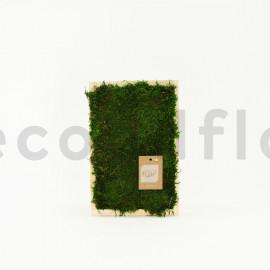 Rectangle de Mousse plate stabilisée - Cadre bois 30 x 20 cm