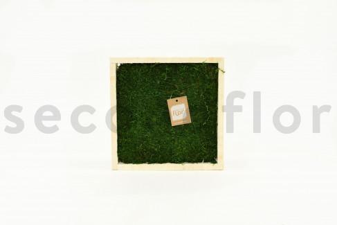 Carré de Mousse plate Stabilisée - Cadre bois 30 x 30 cm