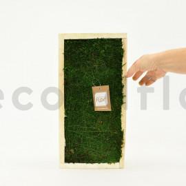Rectangle de Mousse plate Stabilisée - Cadre bois 40 x 20 cm